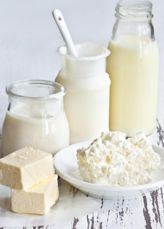 Professionals debate over whether or not dairy products are a good source of calcium for osteoporosis patients.