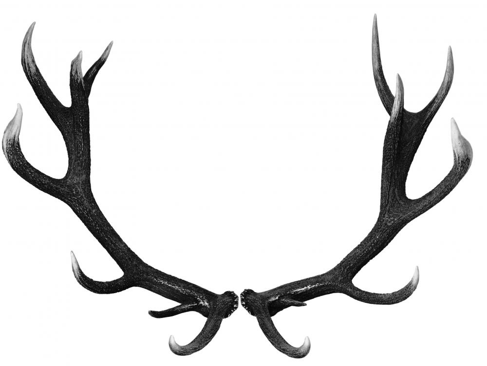 Antlers may be used to make a peace pipe.