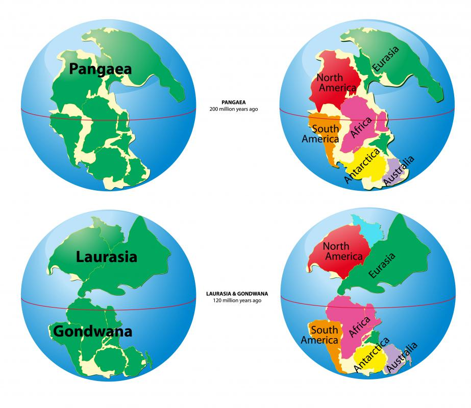 Continental drift, a forerunner of plate tectonics, explained how the current continents once likely fit together.