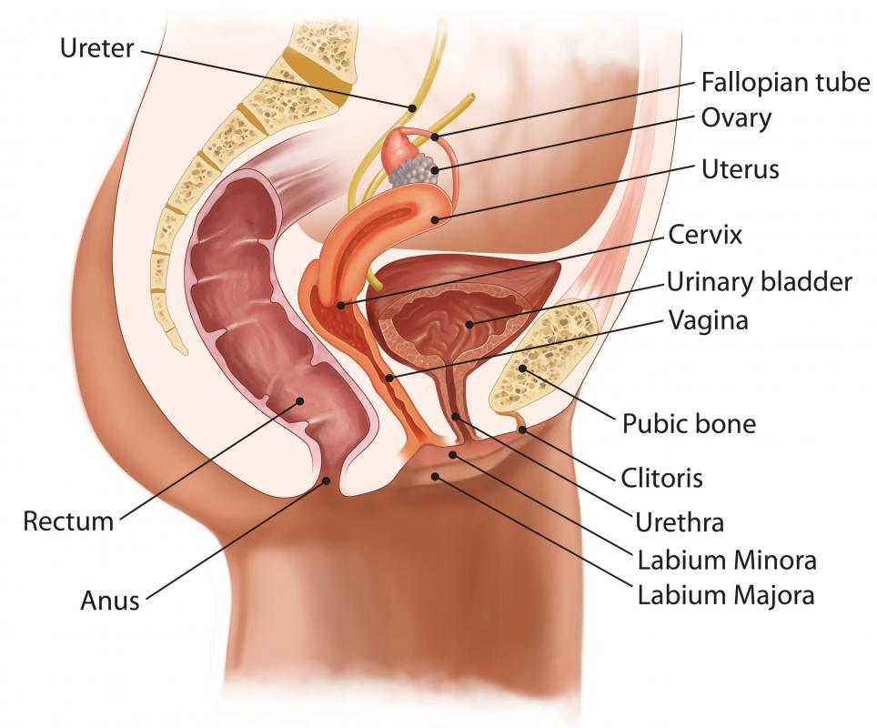 A rectal tube inserted into the anus opens the rectum and allows gas to pass more easily.