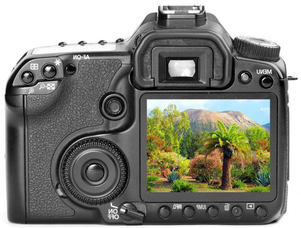 Many DSLR cameras will display a histogram on the back LCD screen.