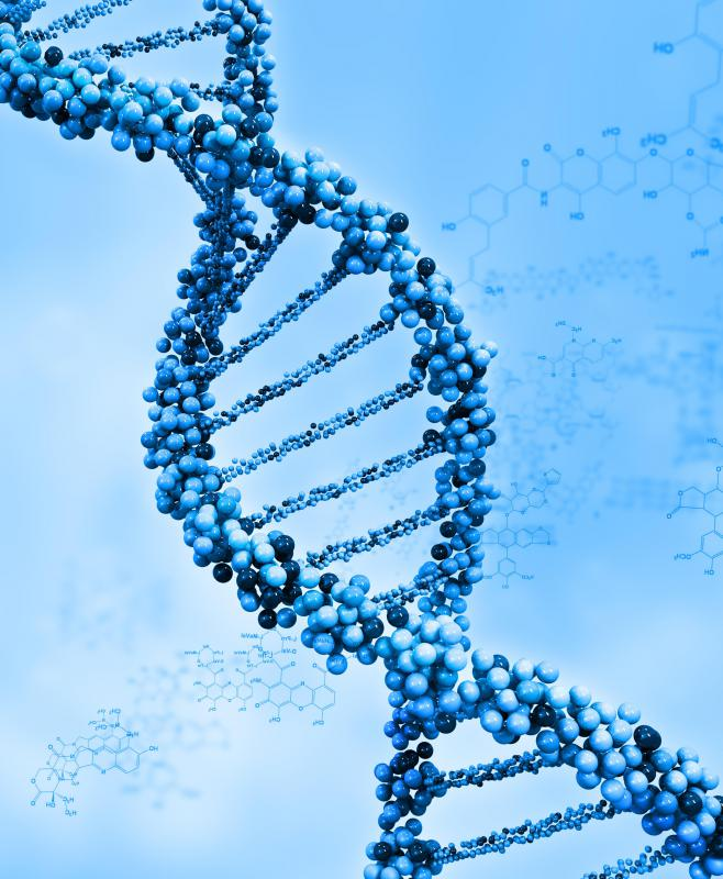 Ribosomal RNA does not pass along a person's genetic code.