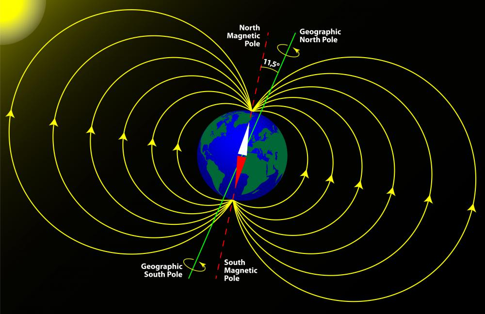 Earth's magnetic poles differ from its geographic poles.