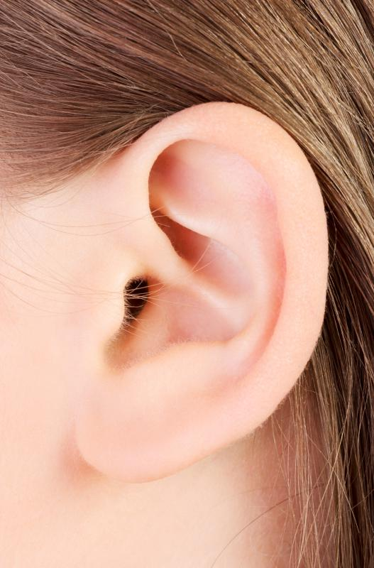Ear pain and dizziness are the most common symptoms of ear infection.