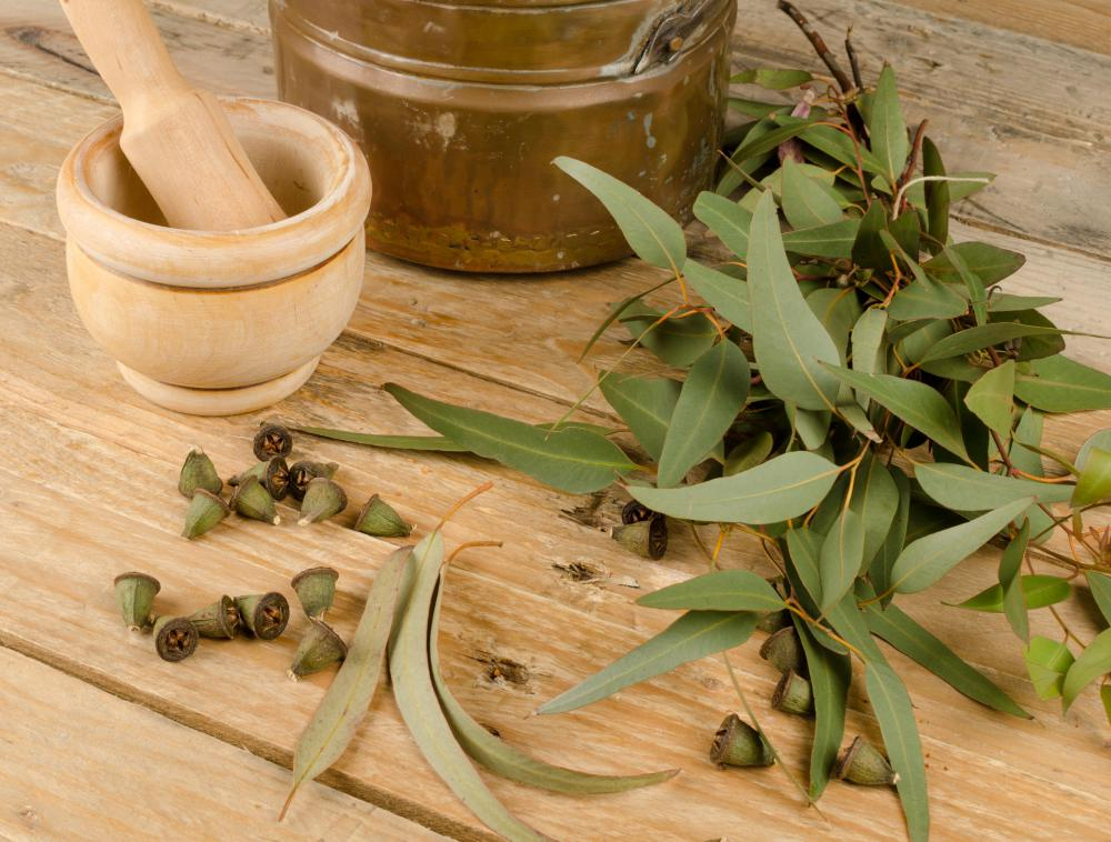 Adding eucalyptus to a foot soak can help relieve aches.