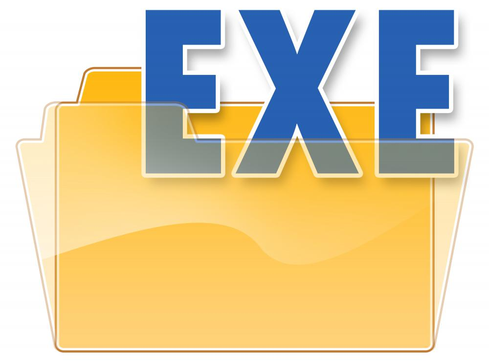 EXE or executable file.