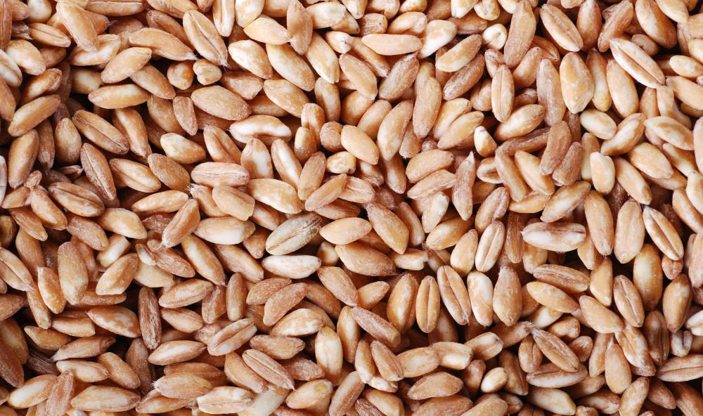 What Is the Difference between Spelt and Wheat Flour?