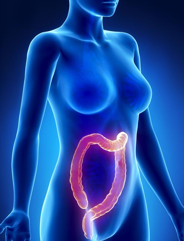 A gastrointestinal endoscopy provides access to the entire GI tract, including the bile duct and colon.