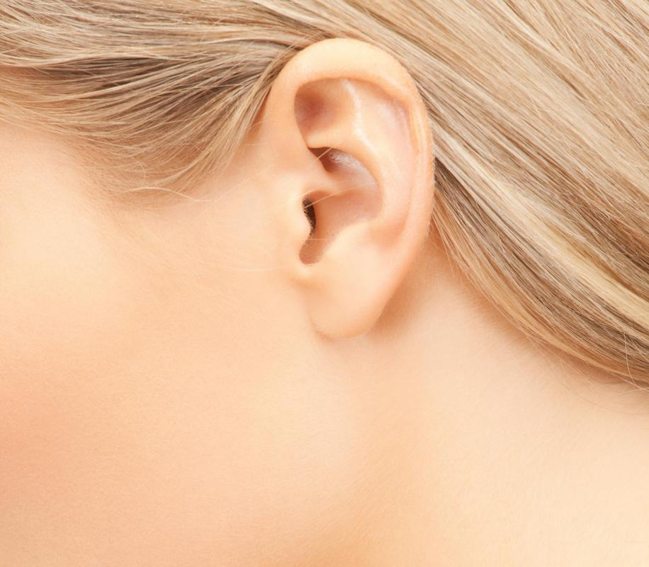 Precancerous lesions are commonly found on the ear.