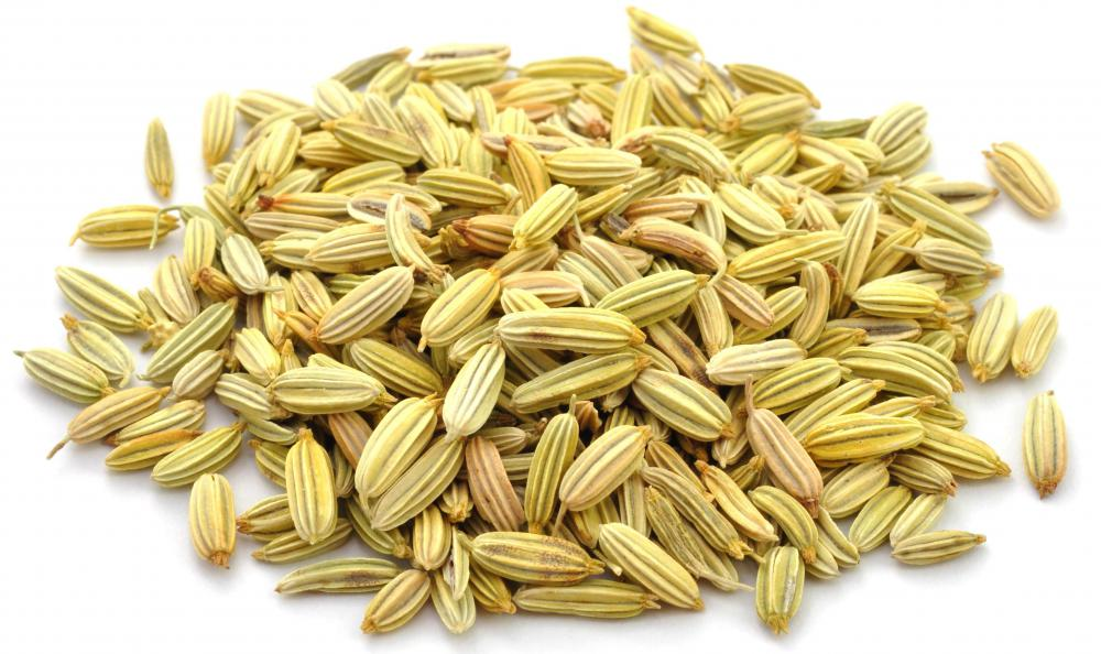 Fennel seeds are popular in Greek mujaddara.