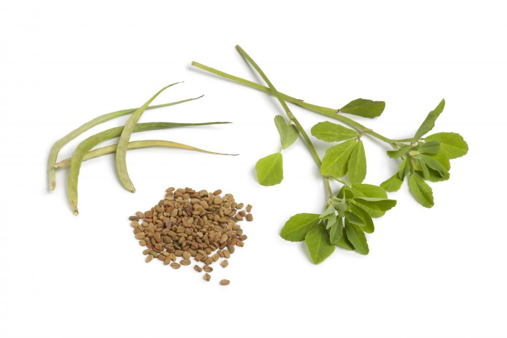 Fenugreek is one herb known to increase a mother's milk supply.