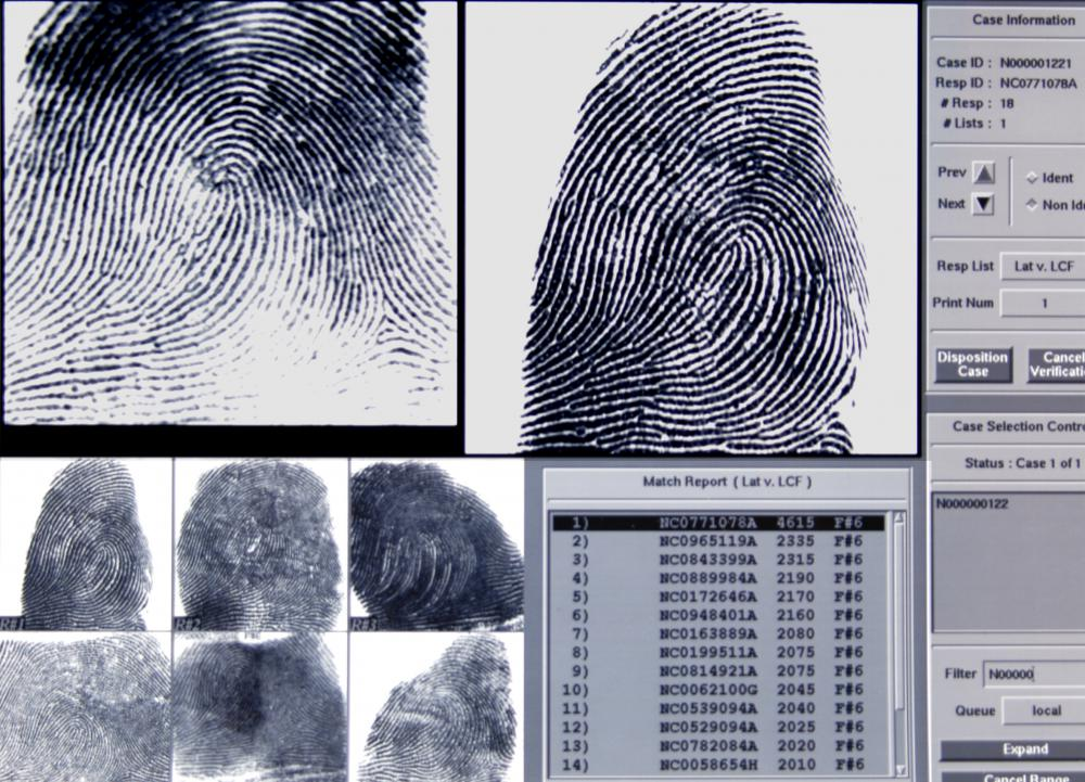 Fingerprint records are handled by a technician.
