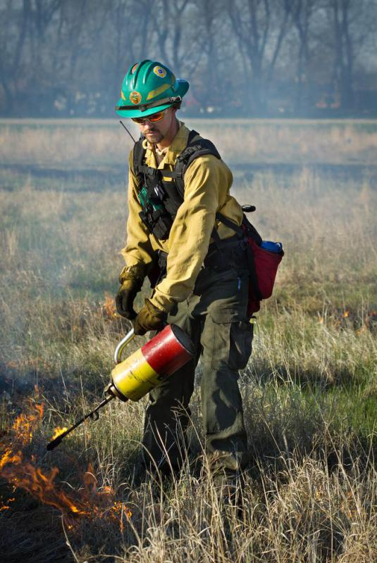 Flamethrowers might be used in forestry for controlled burns to manage forest growth.