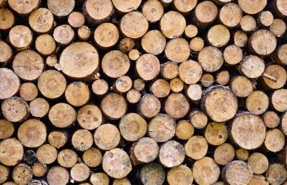 Real wood fire pit logs.