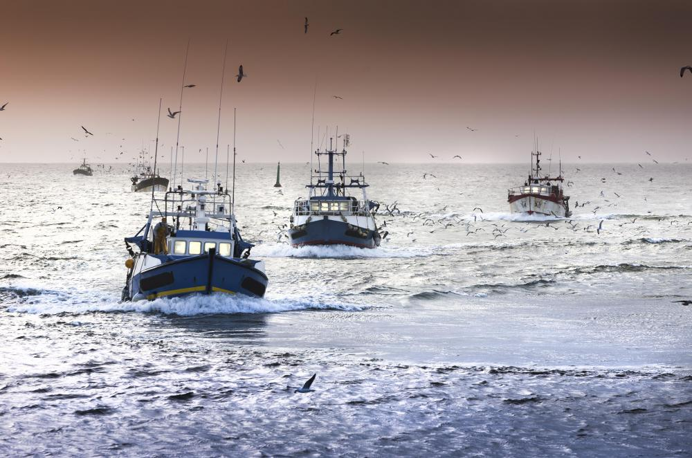 Commercial fishing boats can use sea anchors to slow drift allowing them access to large schools of fish.