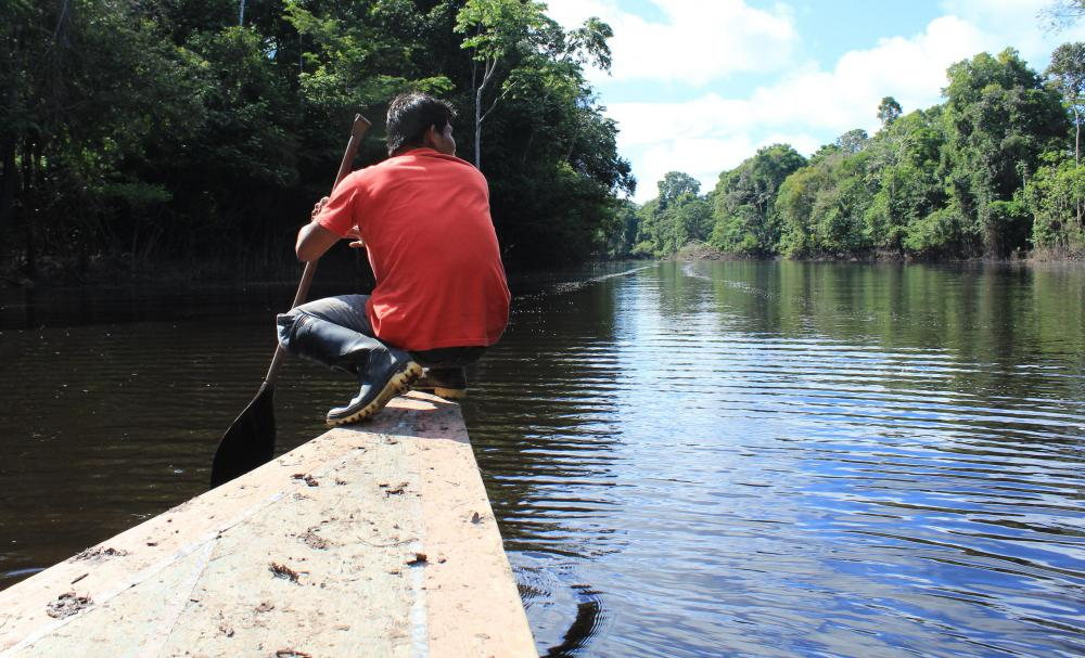 Manu National Park is situated in a remote location in Peru's Amazon region.