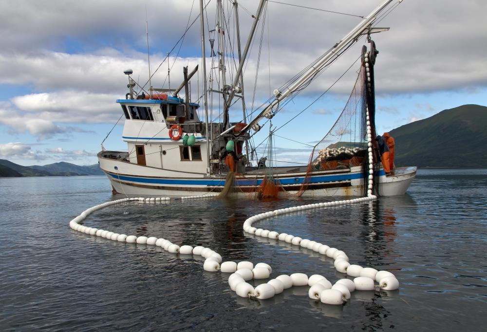 Fishing boats can be used offshore, nearshore, or in rivers or lakes.