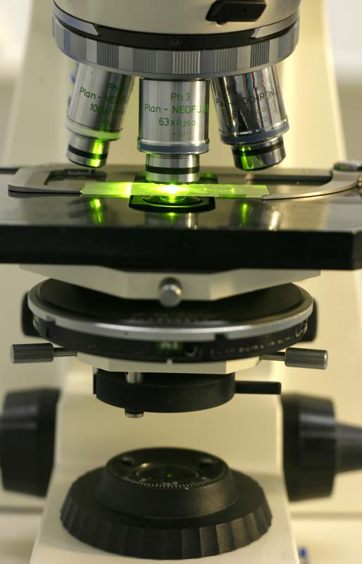 Fluorescence microscopes may be used in genetic research.