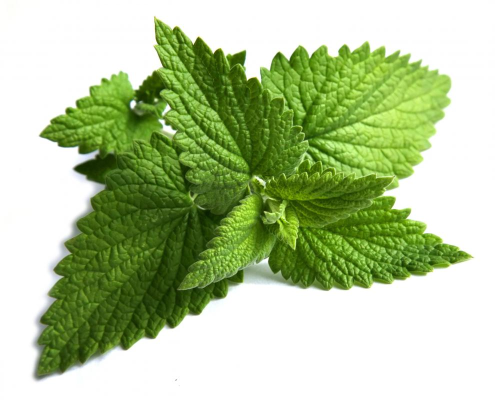Peppermint Leaf Tea What is Peppermint Tea