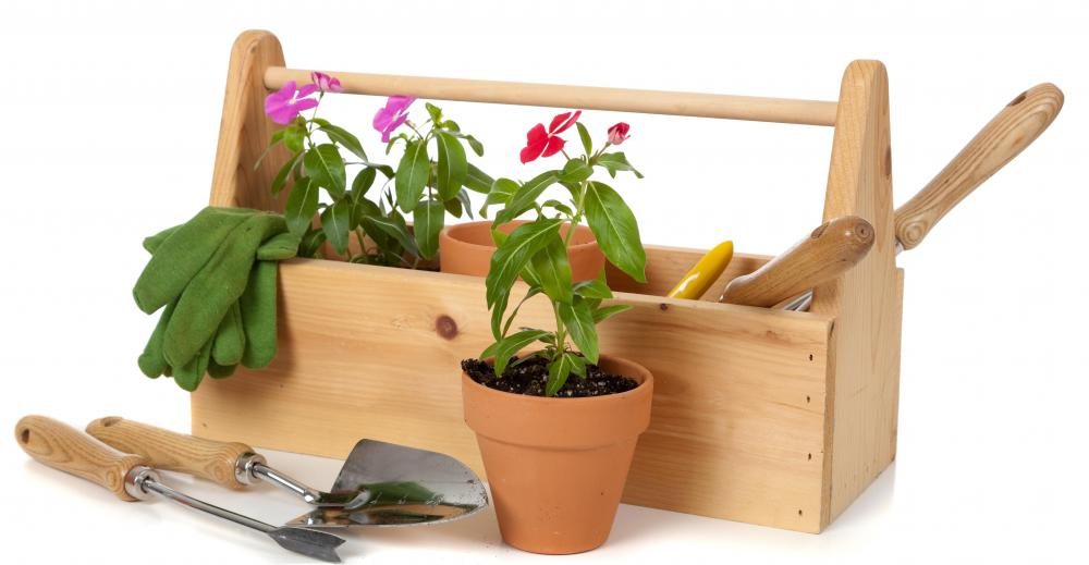 Gardening tools and potted flowers.