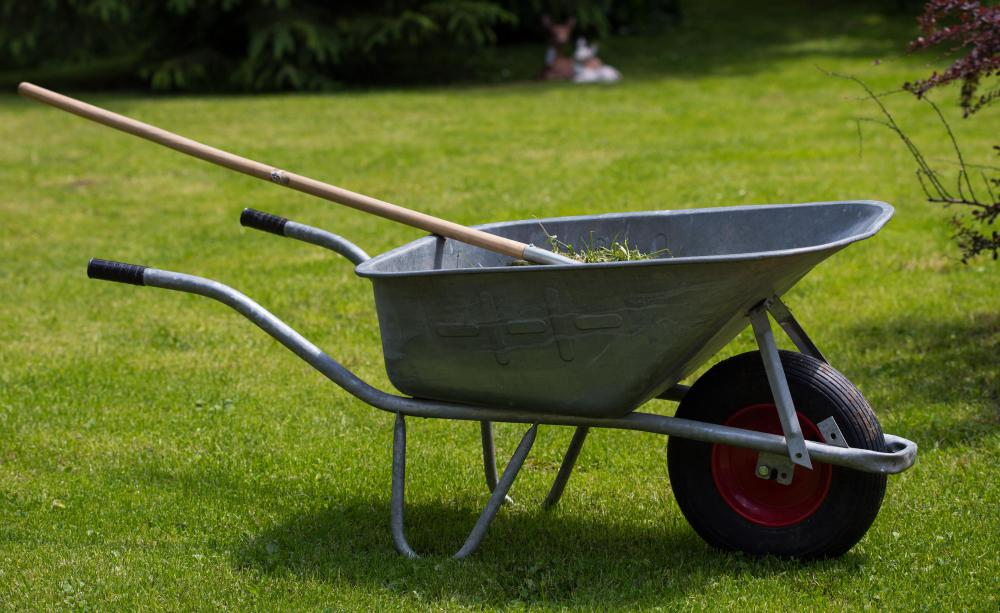 A garden wheelbarrow has a larger wheel to prevent it from harming any grass it crosses.