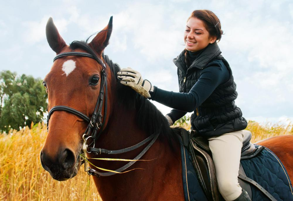 Careers with animals may include horse riding.