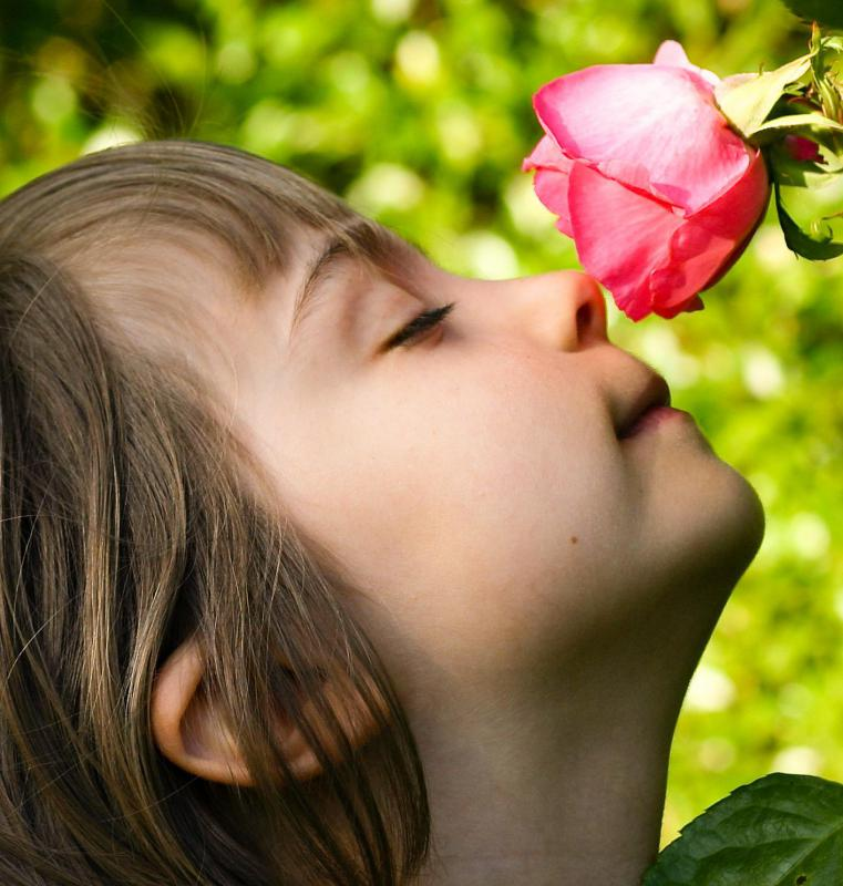 Focusing solely on any of the senses, such as smell, is a form of focal attention.