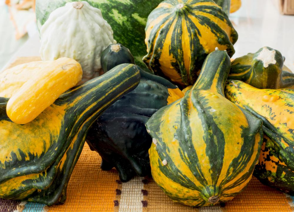Gourds can become infected with the Mosaic Virus.