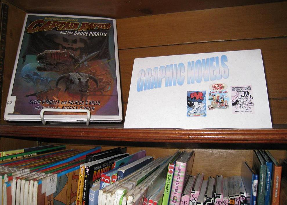 Comic books stores typically sell a large variety of graphic novels.