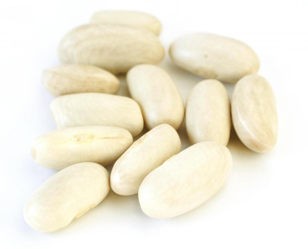Beans, which are a good source of dietary protein.