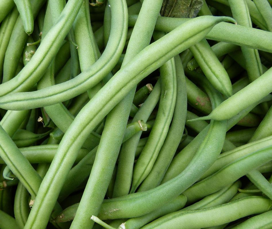 Blanching green beans allows them to retain their color and crunch.