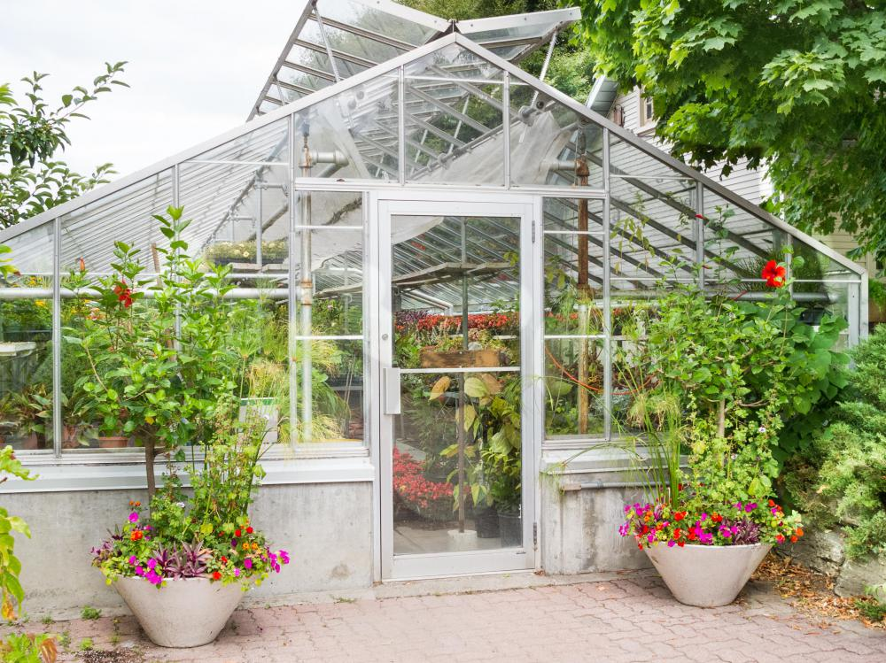 A backyard greenhouse is an ideal place to grow plants, flowers, and vegetables.