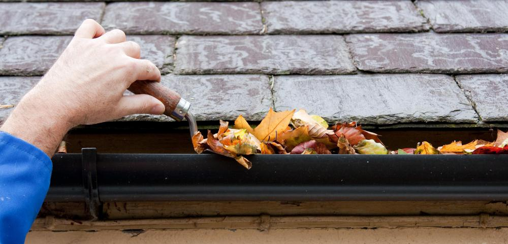 """Honey do"" lists may include cleaning the gutters of debris."