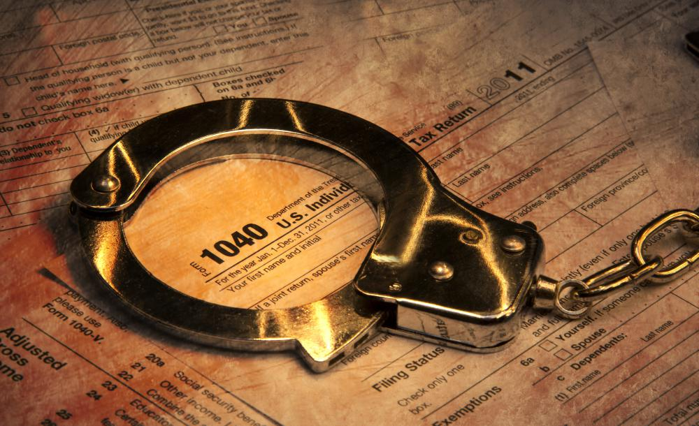 The IRS investigates tax fraud and evasion.