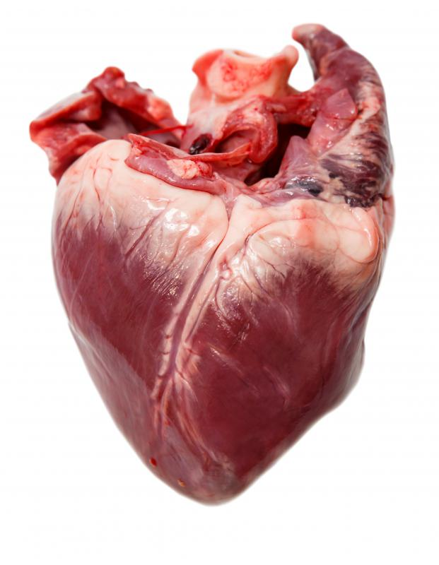 What Is Decompensated Heart Failure With Pictures