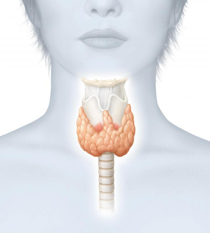 A thyroid enlargement that is present at the time of birth is called a congenital goiter.