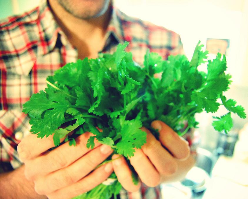 Coriander can be used to make a natural lightener.