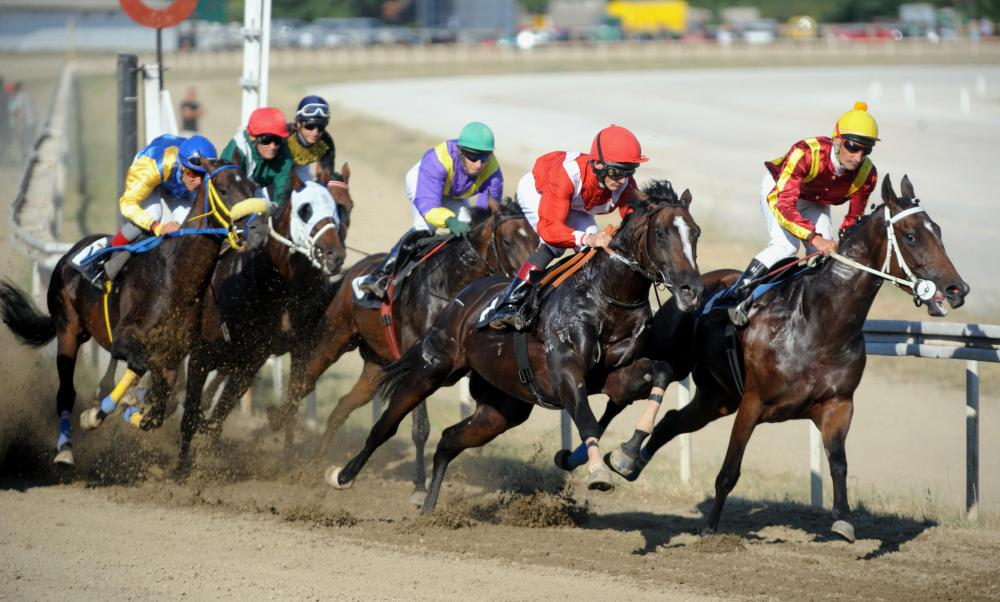 A horse racing jockey must be able to control horses while moving at speeds of up to 40 miles per hour.