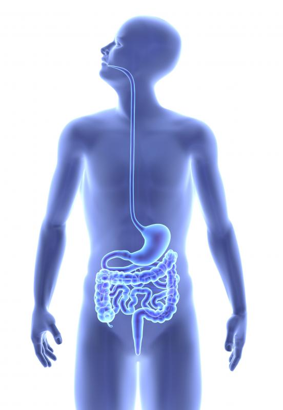 Bowel resection refers to a surgical procedure performed to remove a portion of the large bowel of intestine because of disease.