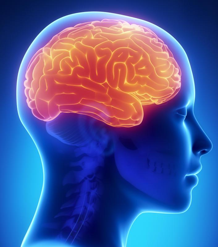 An encephalopathy is a disorder of the brain caused by global brain dysfunction.