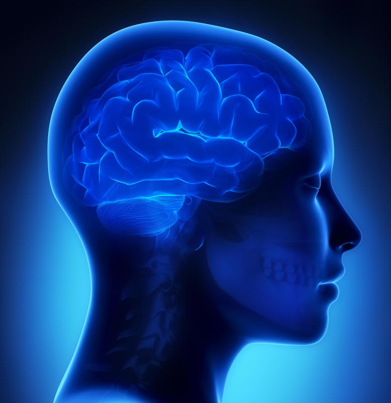 Brain functioning is affected by the respiratory system.