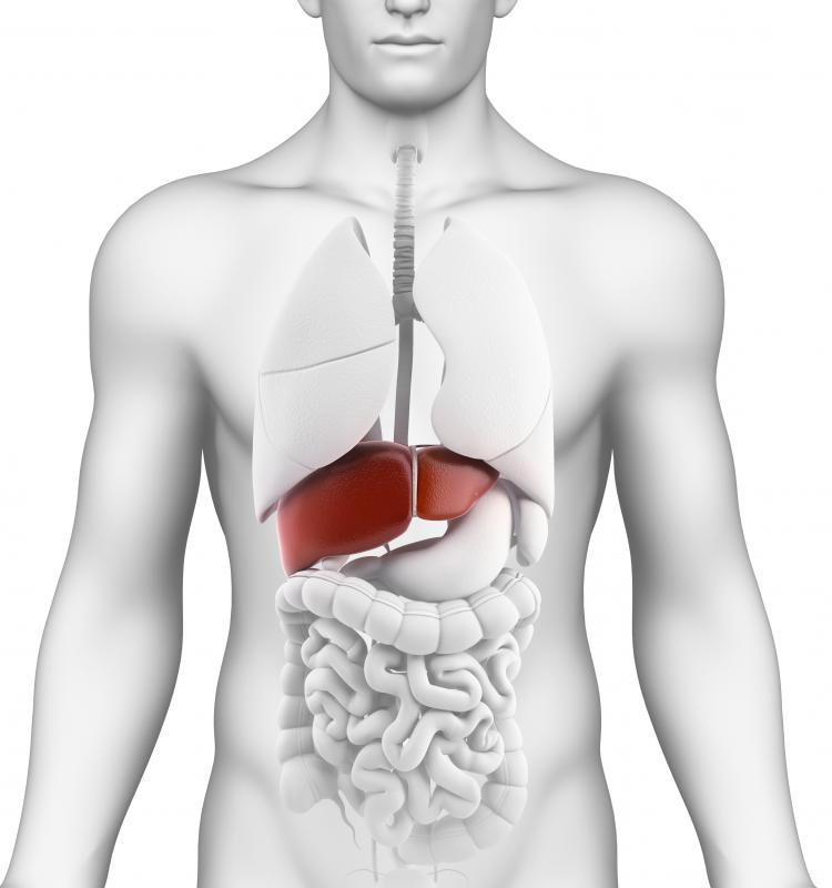 Red wine extract may help prevent liver damage.