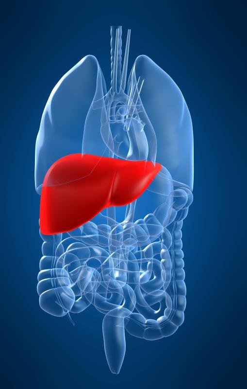 Liver damage is a possible side effect of ranitidine.