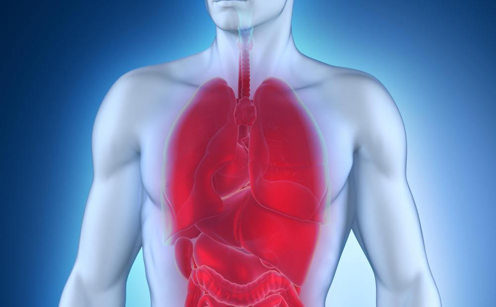 Inflammation of the lungs can be the result of underlying infections and disease.