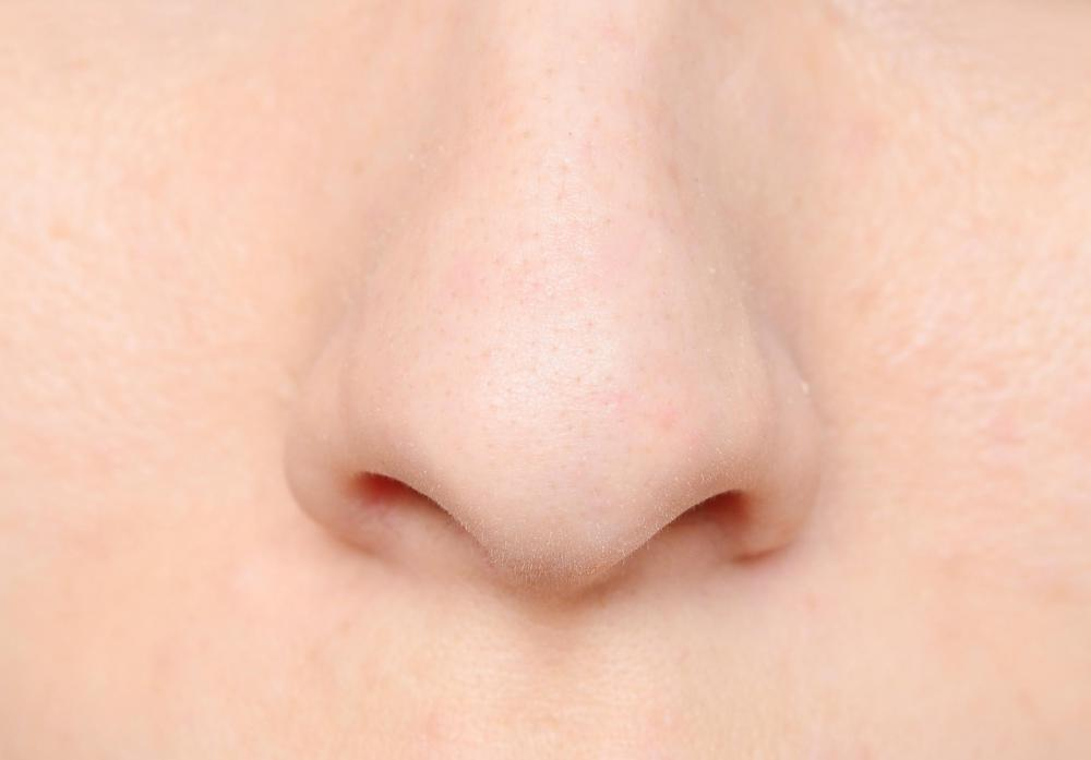 Antibiotic creams may be used to rid a body of ingrown nose hairs.