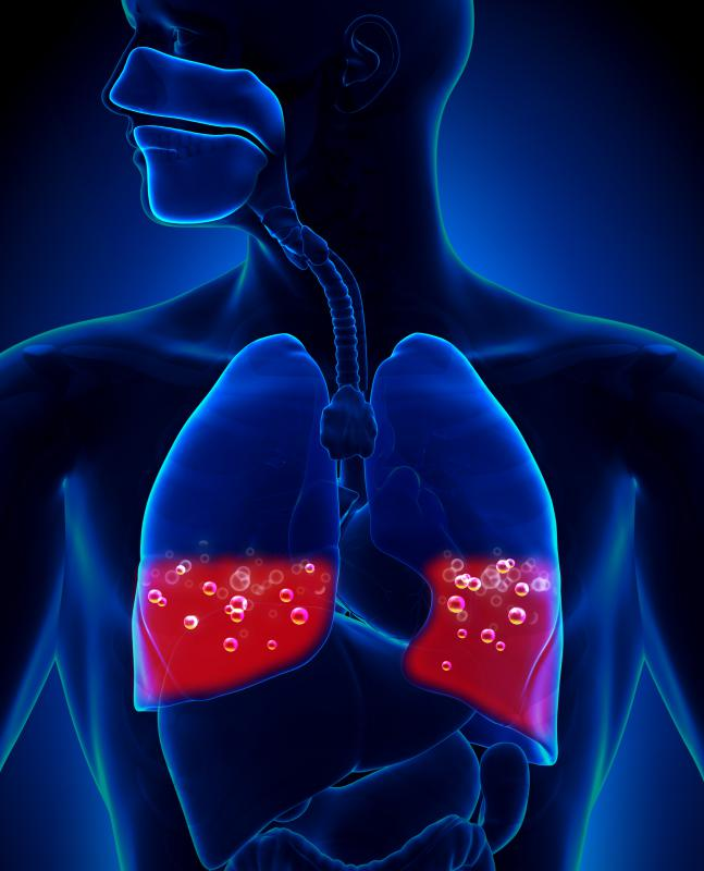 Bleeding into the lungs can be a result of blunt chest trauma.