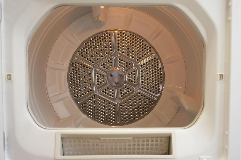 The interior of a clothes dryer, including the lint trap.