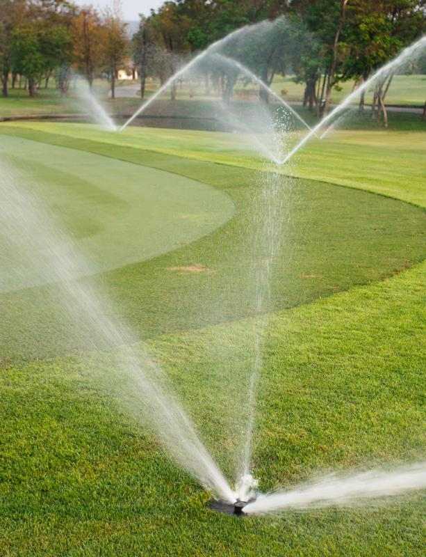 Golf courses use automatic watering systems to maintain their grounds.