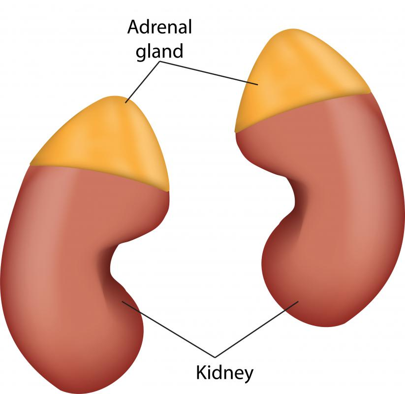 An underactive adrenal gland is called Addison's disease.
