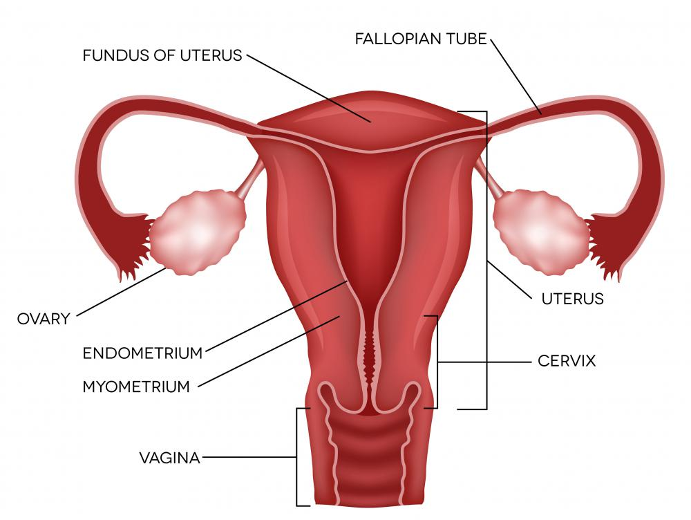 A coagulator is instrumental in treating endometriosis.
